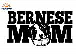 Bernese Mom