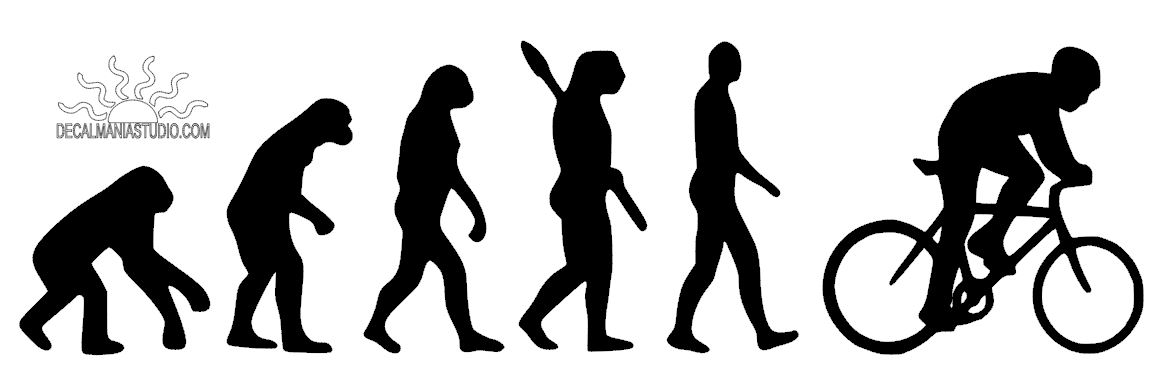 Evolution of Biking