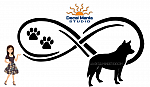 Infinity Cattle Dog