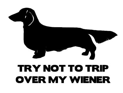 Try not to trip over my Wiener (Long hair)
